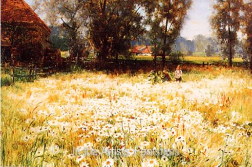 A Field of Daisies by Thomas Bromley Blacklock